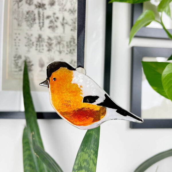 Bullfinch fused glass decoration
